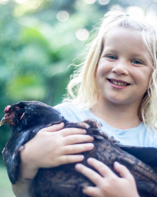 Girl plays with chicken family photographer