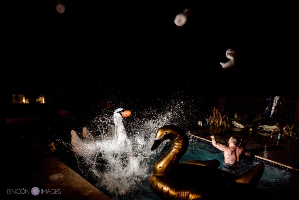 Wedding party photograph of guests splashing in a pool filled with floaty swans